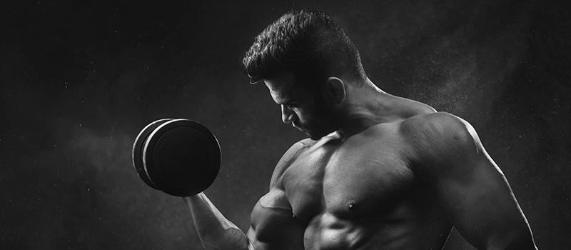 creatina e musculação